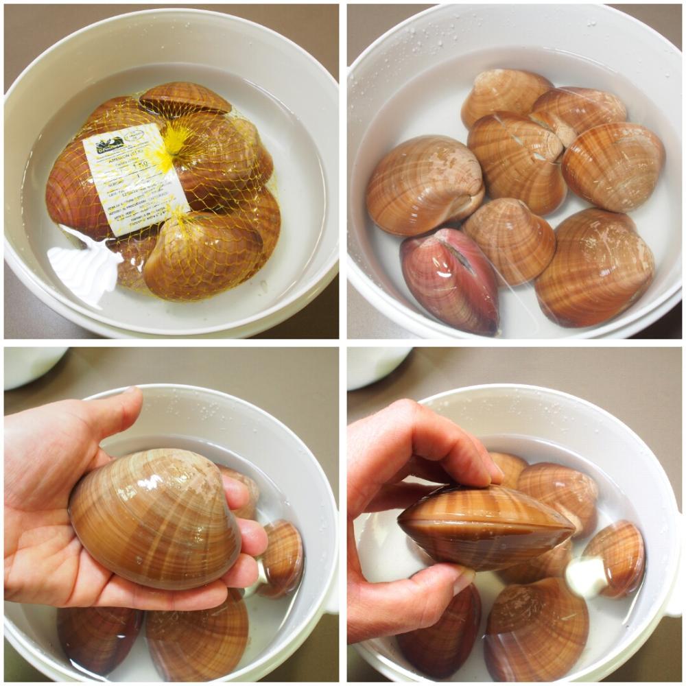 Cómo abrir y limpiar conchas finas - Paso 1